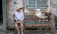 The Durrells in Corfu: Trailer